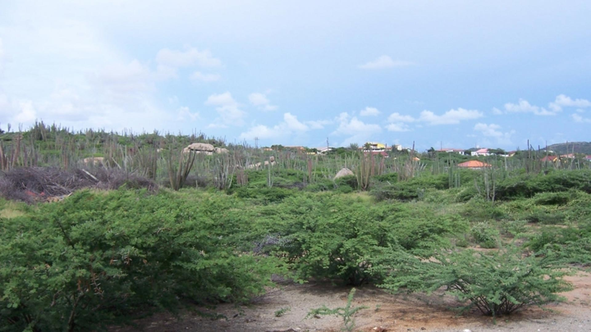 Property Land For Sale In Santa Cruz Aruba Real Estate
